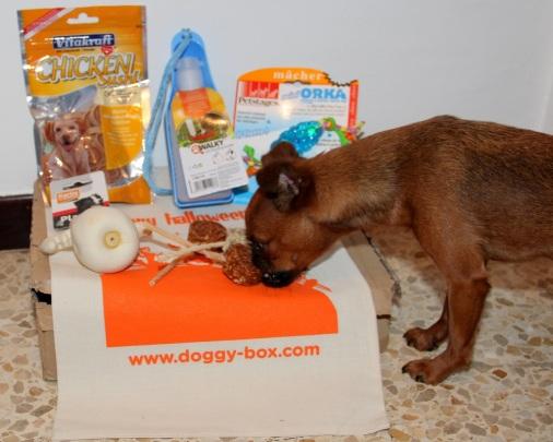 Penny Doggybox