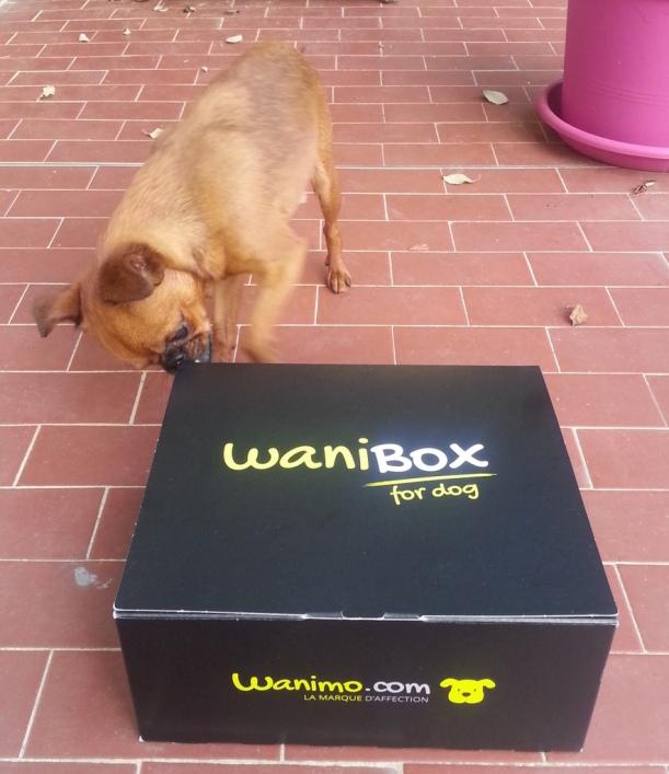 Wanibox